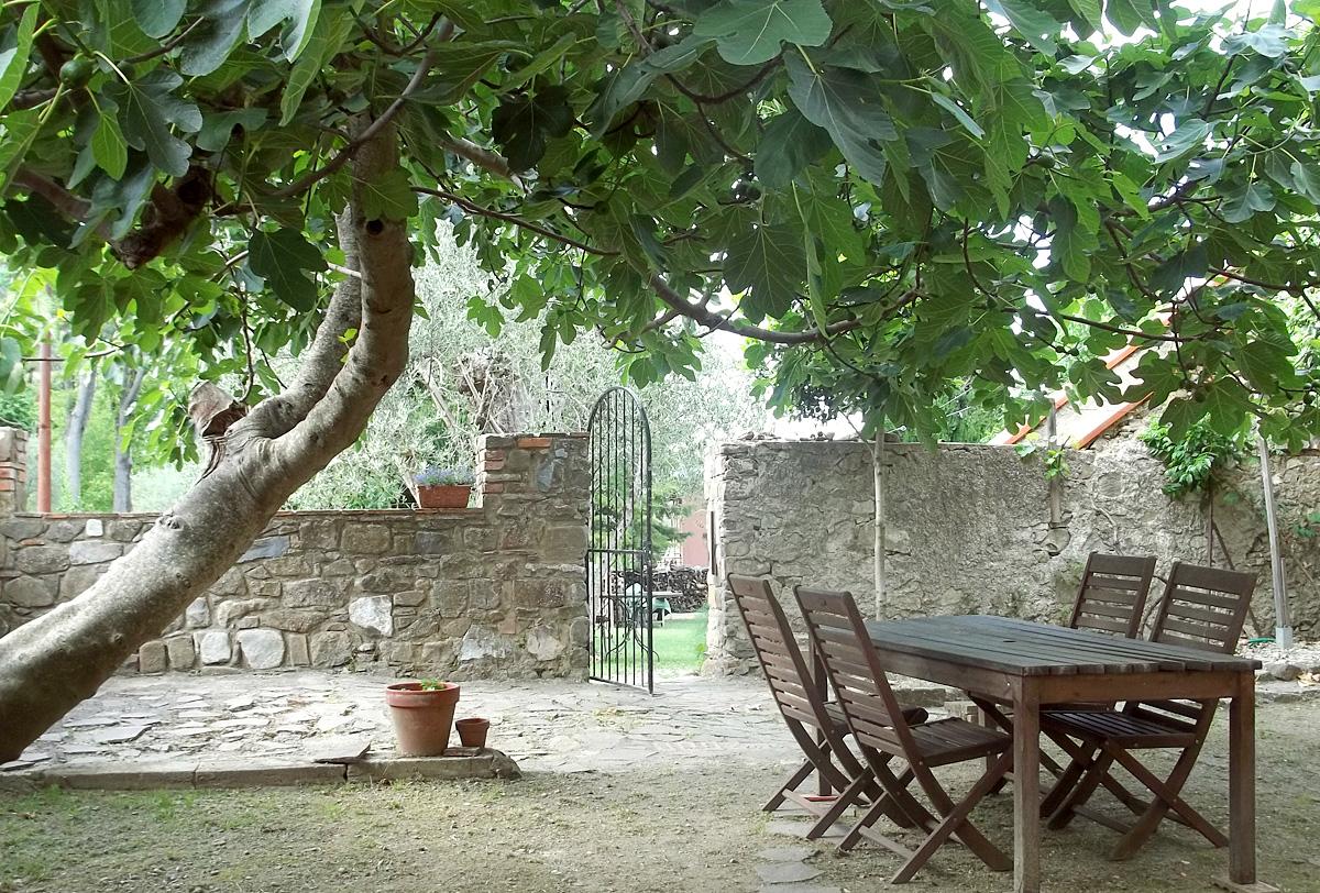 Fig Tree Table