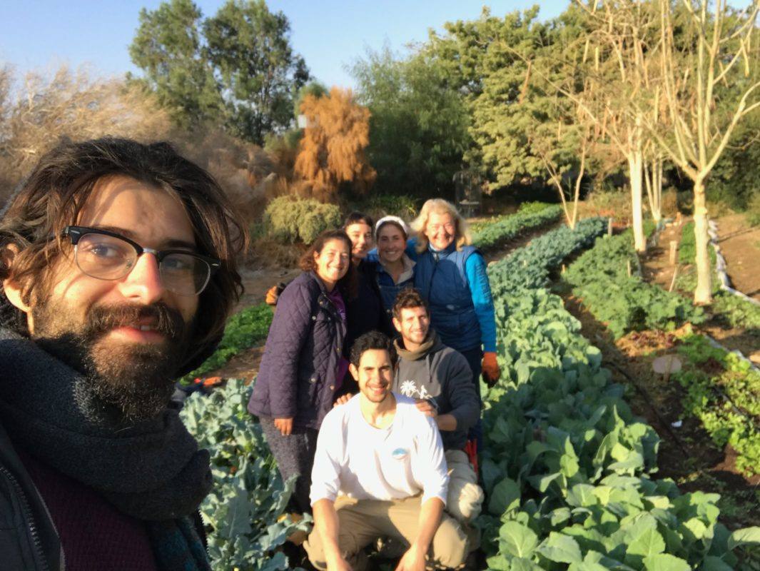 Permaculture in the Desert