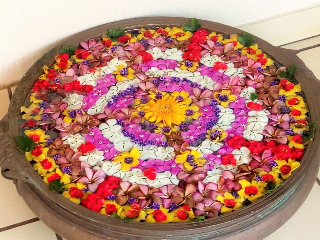 Auroville's Rich Cultural Life